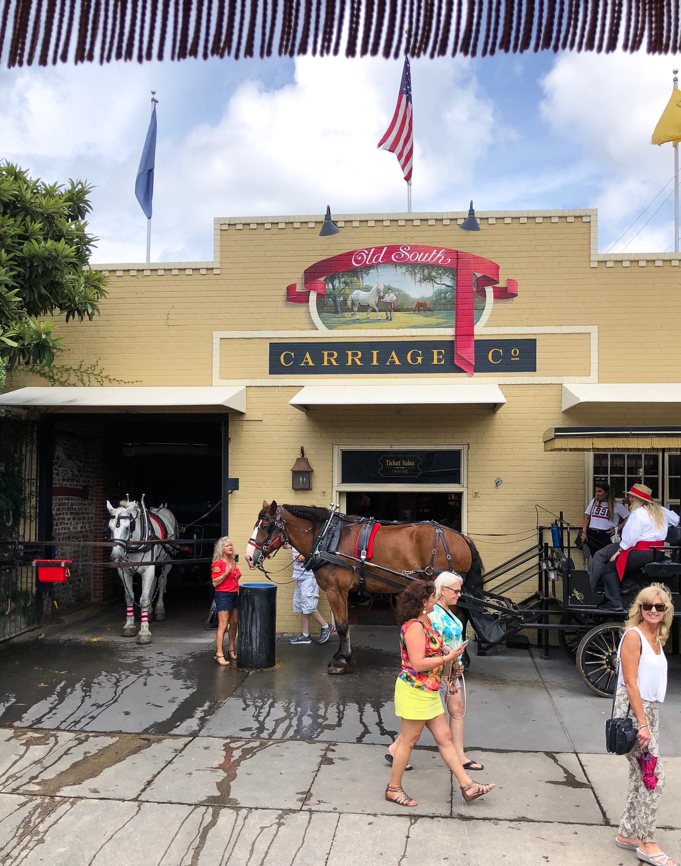 Best Carriage Ride in Charleston Old South Carriage Company Charleston